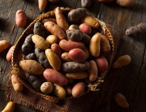 Braised Fingerling Potatoes